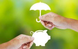 Assurance vie sans frais : comment choisir et quels sont les meilleures offres ?